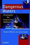 Dangerous Waters: Strategies for Improving Wellbeing at Work (Wiley Series in Work Well–Being & Stress)